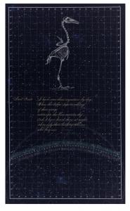 Natural Philosophies (panel 1), Martha Glowacki. 2009