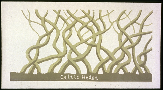 Celtic Hedge, David Nash. 1995