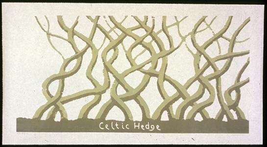 Celtic Hedge, David Nash. 1995