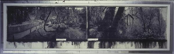 Til Skogen, Judy Pfaff. 2000