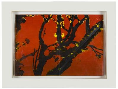 Untitled (#1), Judy Pfaff. 2008