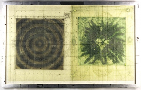 Untitled (target, fern, mixed media plexi), Judy Pfaff. 2000