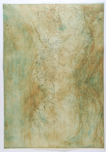 Coastal Mapping (Arnold's Back), Jane Rosen. 2004