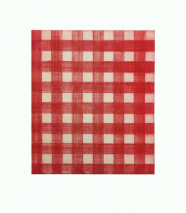 Warm Red Gingham, Michelle Grabner. 2015