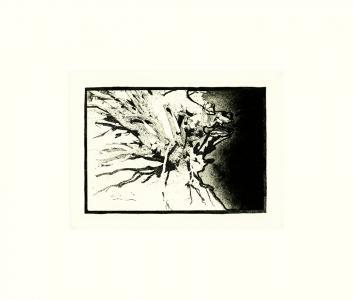 Untitled I, David Lynch. 1999