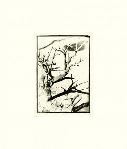 Untitled XII, David Lynch. 1999