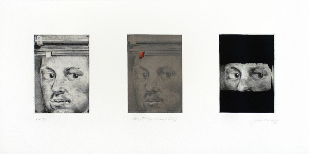 Goya Trilogy: Looking and Seeing, Joseph Goldyne. 1994