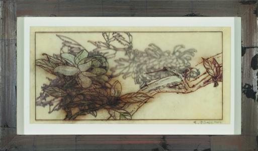 Magnoliaceae, Judy Pfaff. 2005