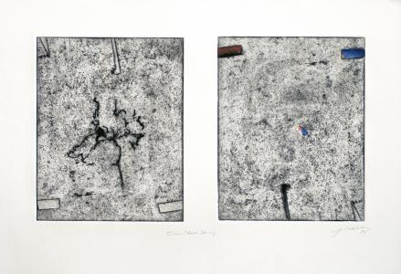 Iris Chaos Study, Joseph Goldyne. 1994