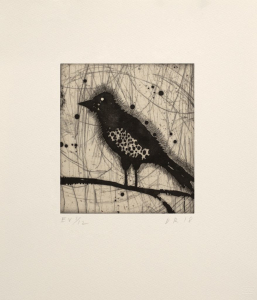 Little Harried Bird [ev 1/12], Dan Rizzie. 2018