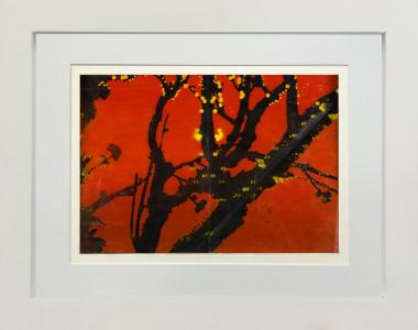 Untitled #1, Judy Pfaff. 2008