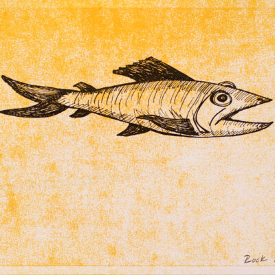 Bill Rock, Mustard Fish, 2016