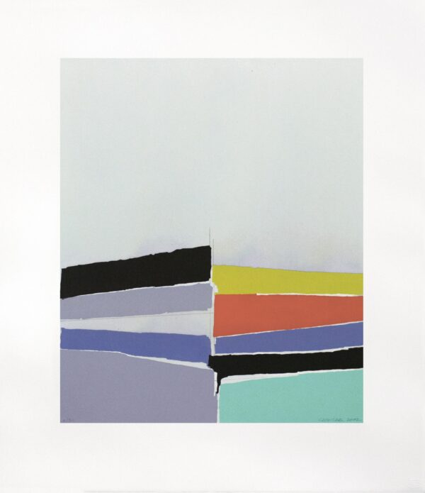 Suzanne Caporael, Humber River Estuary (gray), 2002