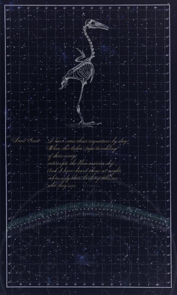 Martha Glowacki, Natural Philosophies (panel 1), 2009