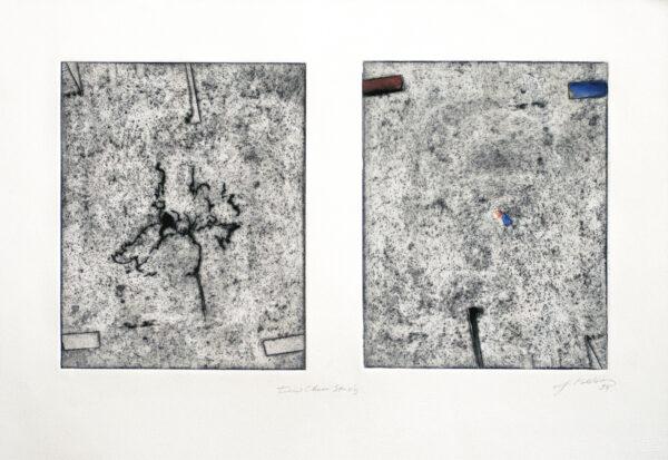 Joseph Goldyne, Iris Chaos Study, 1994