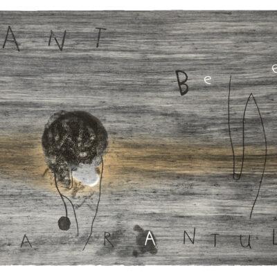 David Lynch, Ant Bee Tarantula, 1998