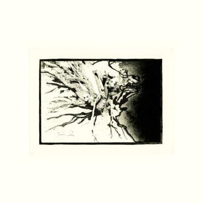 David Lynch, Untitled I, 1999