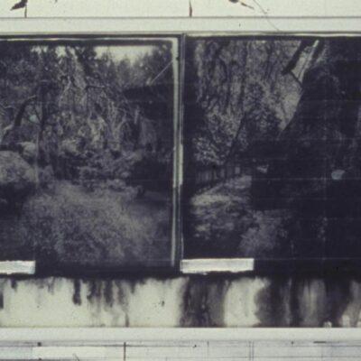 Judy Pfaff, Til Skogen, 2000