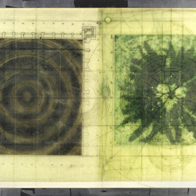 Judy Pfaff, Untitled (Target, fern, mixed media plexi), 2000