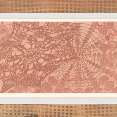 Judy Pfaff, Untitled (colored lace), 2005