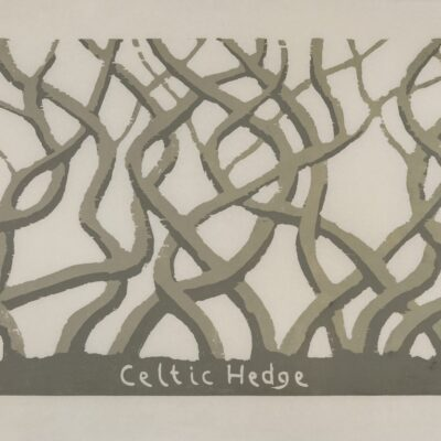 David Nash, Celtic Hedge, 1995