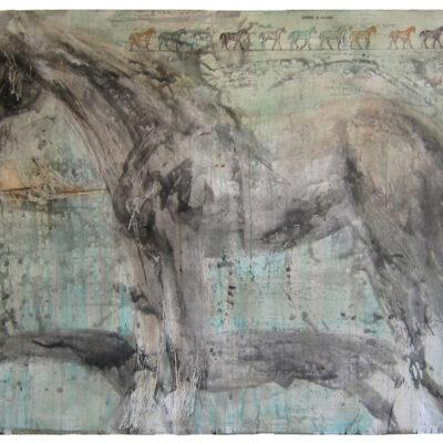 Jane Rosen, La Toya, 2004