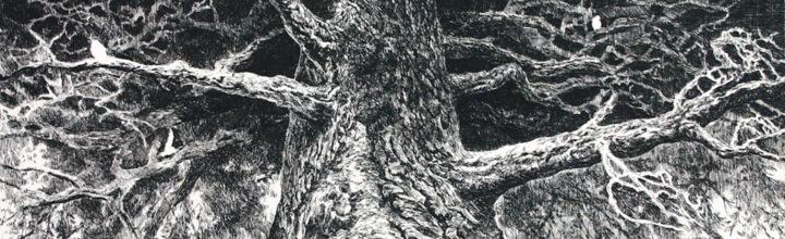 Read: Ikeda Manabu's <em>Rebirth</em> highlighted in Colossal