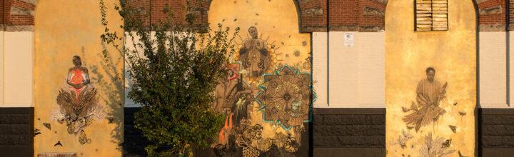 Watch: Swoon and the Philadelphia Mural Art's program
